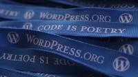 Schutz vor Hackern, Bots und Spammern dank 10 WordPress Regeln