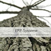 ERP-Systeme, wie z.B. SAP, bilden die Basis der Unternehmenssoftware