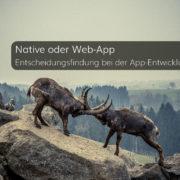Native oder Web-App – Entscheidungsfindung bei der App-Entwicklung