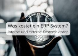 Interne und Externe Kostenfaktoren bei der Einführung von ERP-Software