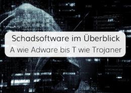 Unser Überblick über die Arten von Schadsoftware für IT-Systeme