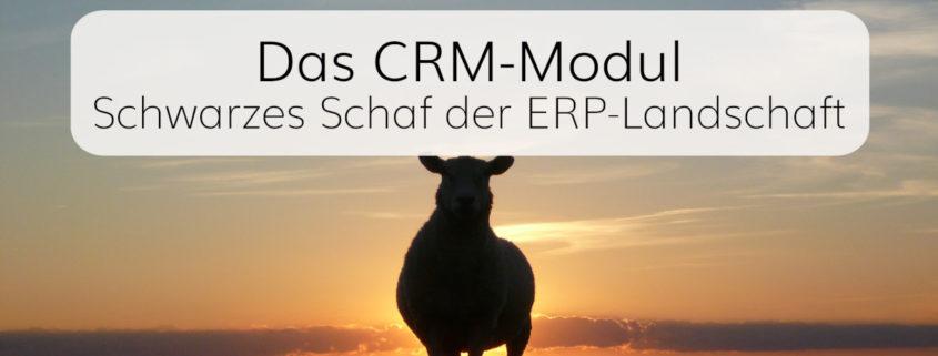 Vorteile und Nachteile von CRM-Modulen für ERP-Software