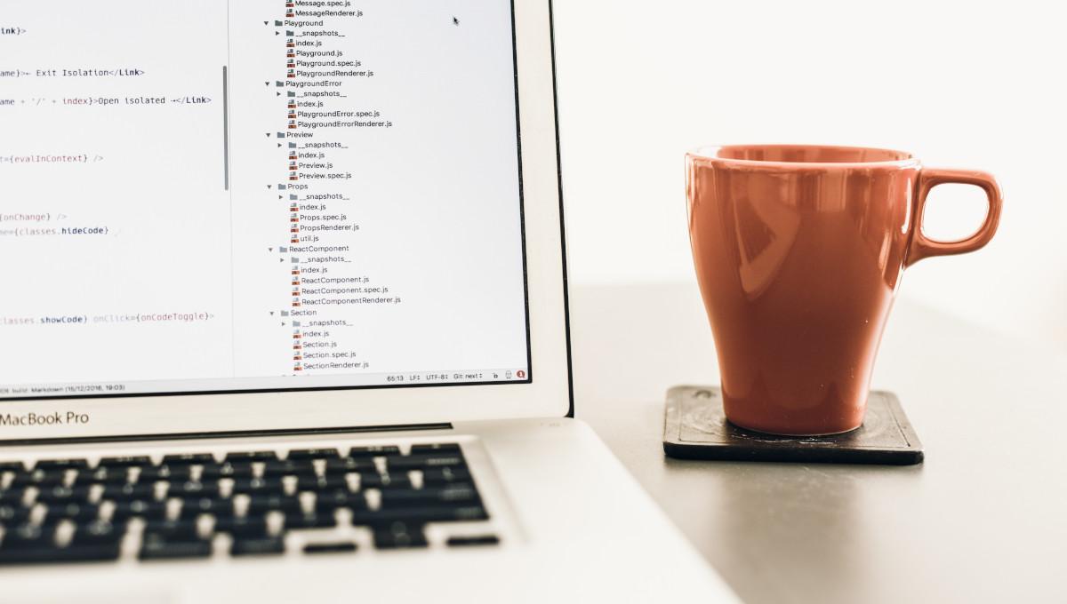 Entwickler für C++, C# oder Java